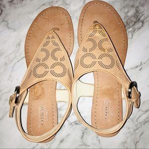 Coach Sandals Size:: 8